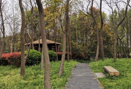 Qingxin Park (South Gate)