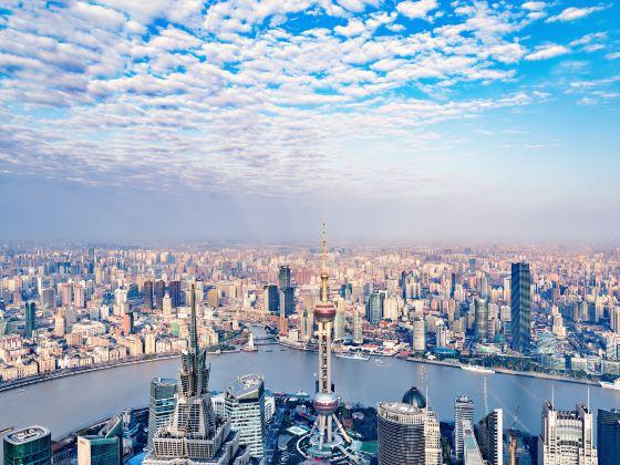 상하이 세계금융센터 전망대
