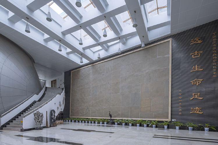 중국 지질대학 박물관2