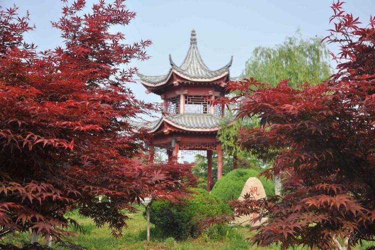 Fuyang Ecological Park1