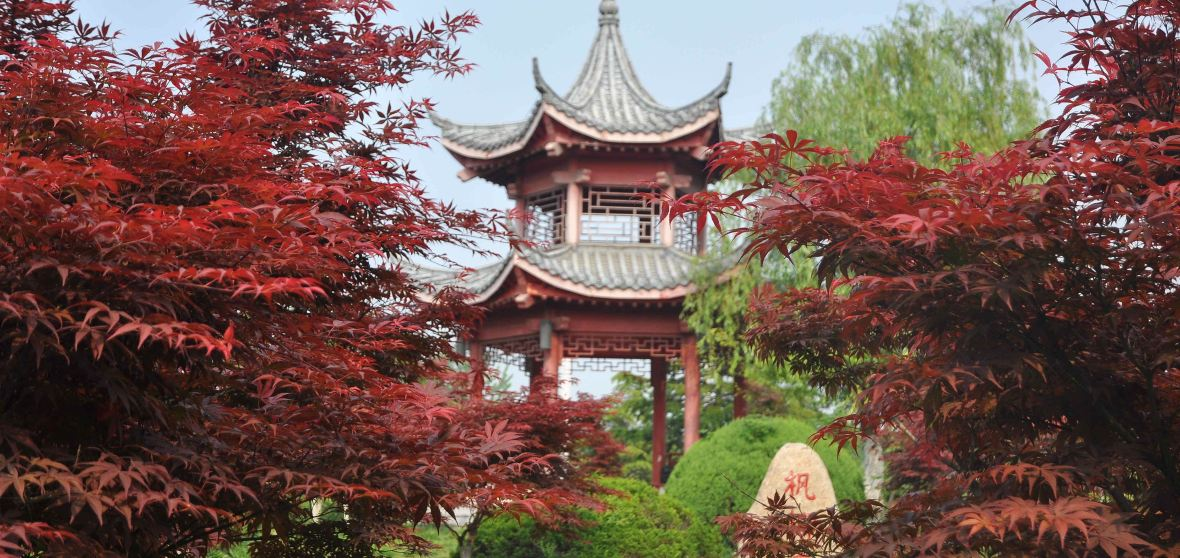 Fuyang