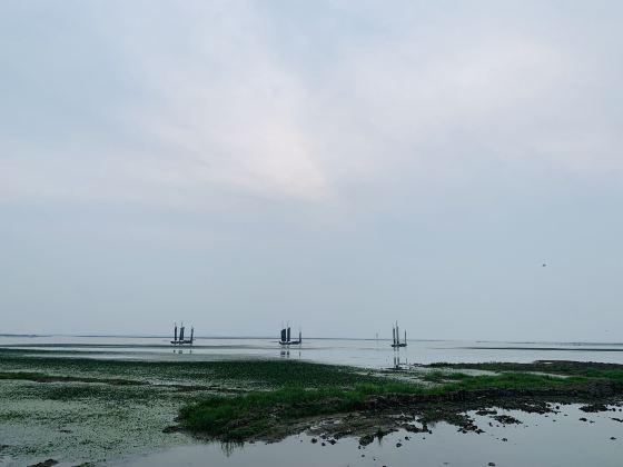 Gaoyou Hutan Jiaoye Park