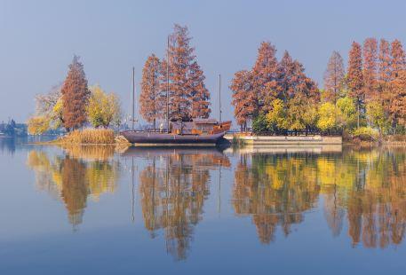 Shanghuang Ecology Wetland Park