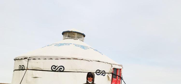 蒙古人遊牧部落