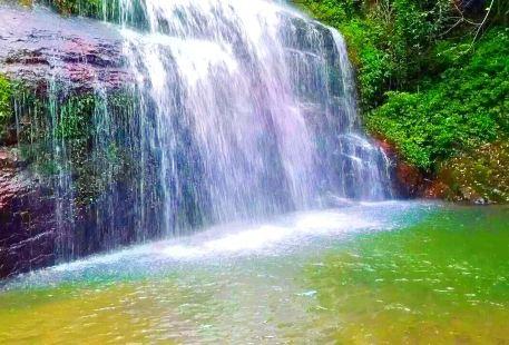 Laogou Primeval Forest