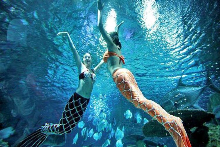 Xuzhou Underwater World2