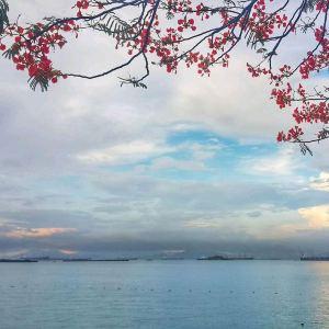 เกาะสีชัง,แนะนำ