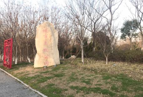 Chengshi Culture Park
