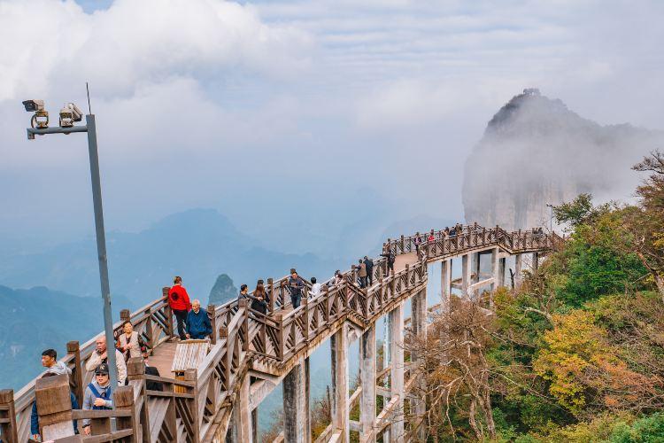 톈먼산 국가산림공원(천문산 국가삼림공원)