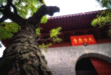 雲龍山公園大士岩寺