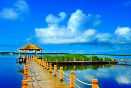Xingkai Lake New Kailiu Scenic Area