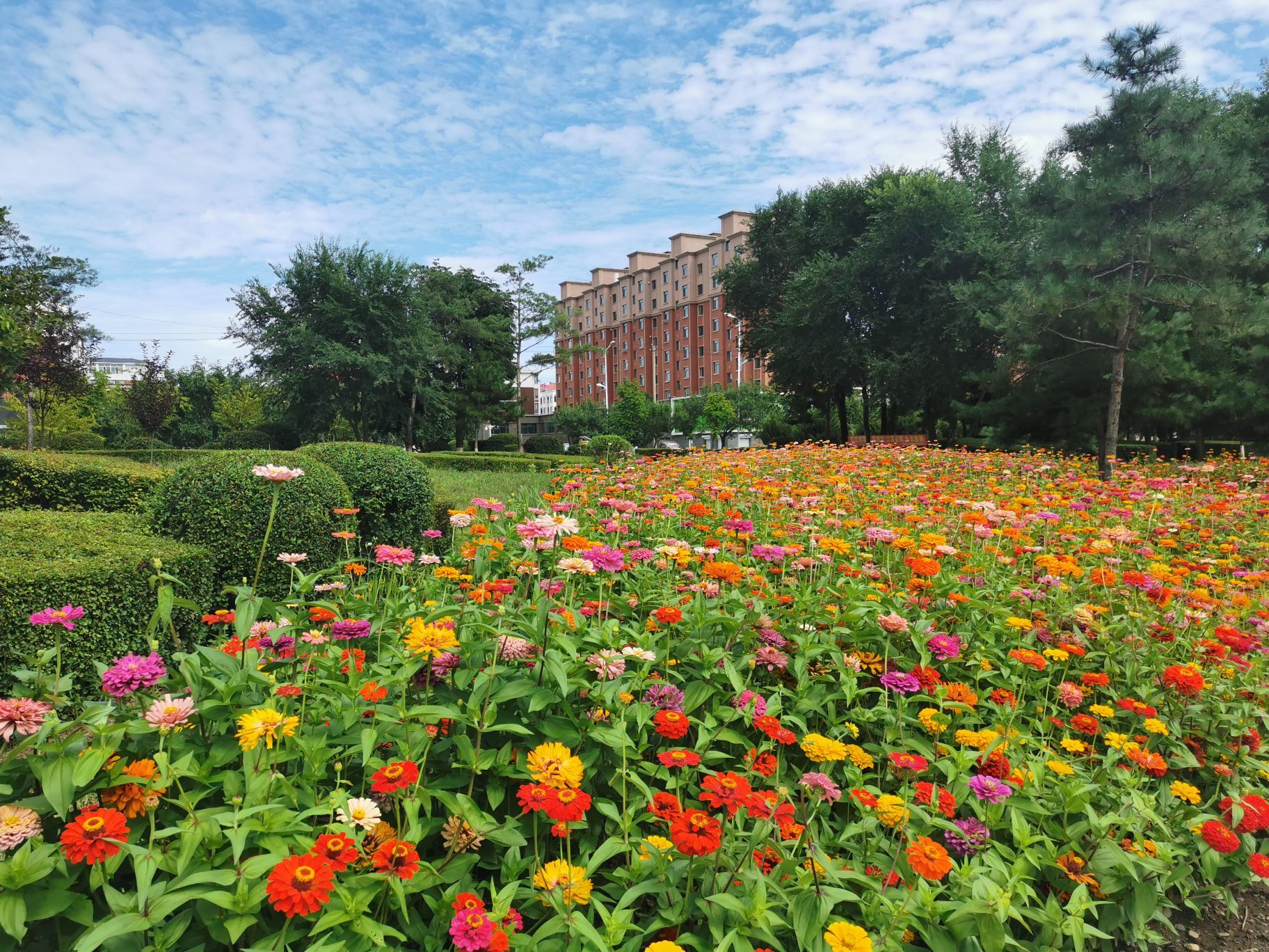 Longyuan Park