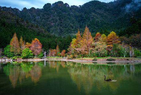 Ingot Mountain Scenic Area