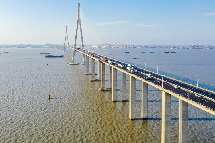 蘇通大橋2