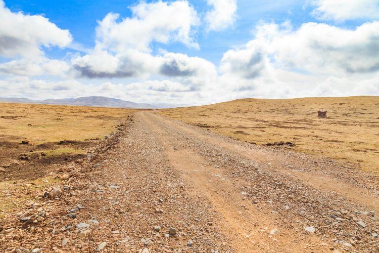 다산바오 검은목두루미 자연보호구역1