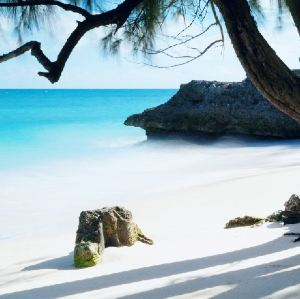 Barbados,Recommendations