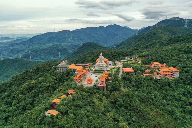 Mount Guanyin Wangshan Temple Scenic Area3