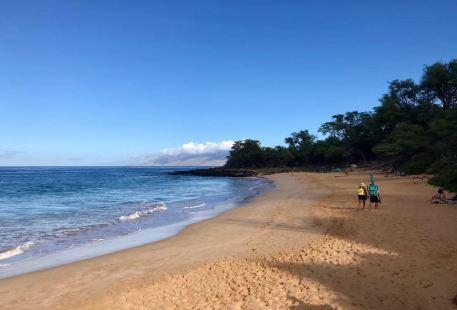 Honoli'i Beach Park