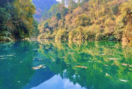 Wild Valley Scenic Area