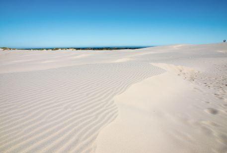 沙漠觀景台