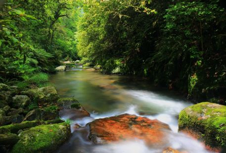 Huangsang National Nature Reserve