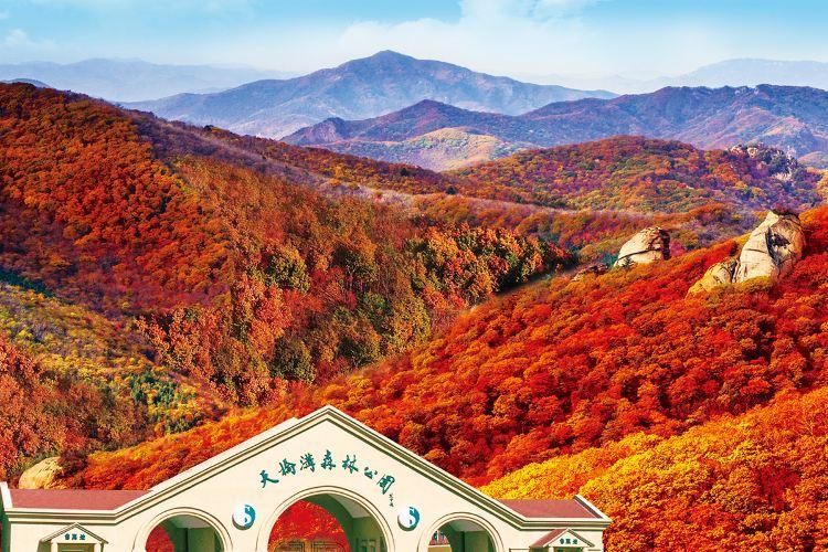 Kuandian Tianqiaogou National Forest Park1