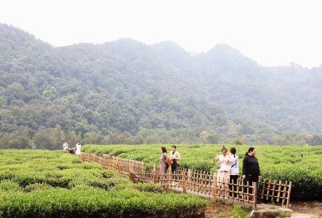 Tianfozhishan Reserve