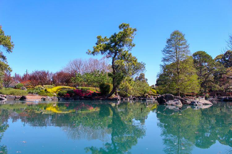 前湖公園2