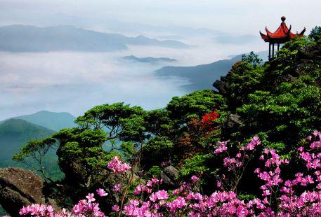 Yangling National Forest Park
