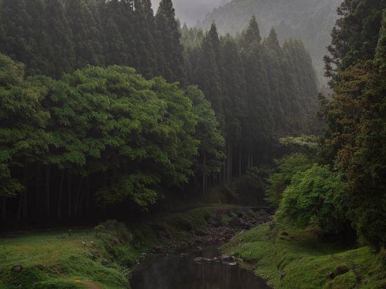 Jiguanshan Mountain