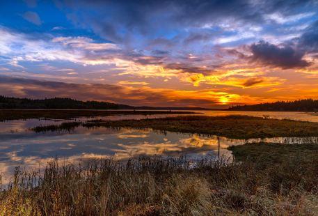 Wusulijiang National Wetland Park