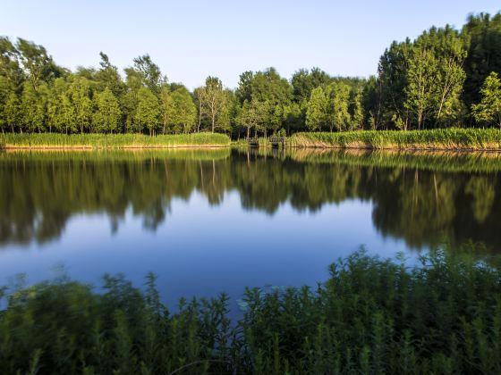 勝溪湖濕地公園