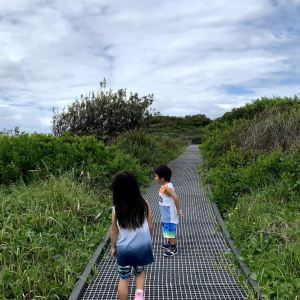 Maroubra,Recommendations