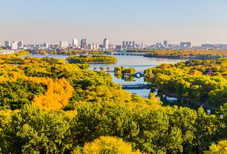 長春市南湖公園南部-林地風光區