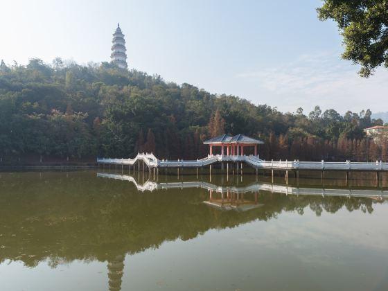 Guoqiao Park