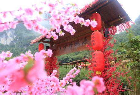 Xiangbeishiwaitaoyuan Sceneic Area