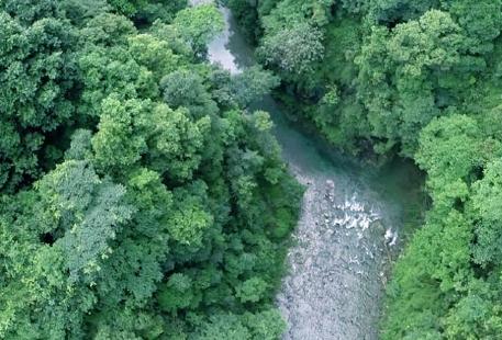 冷水河自然保護區