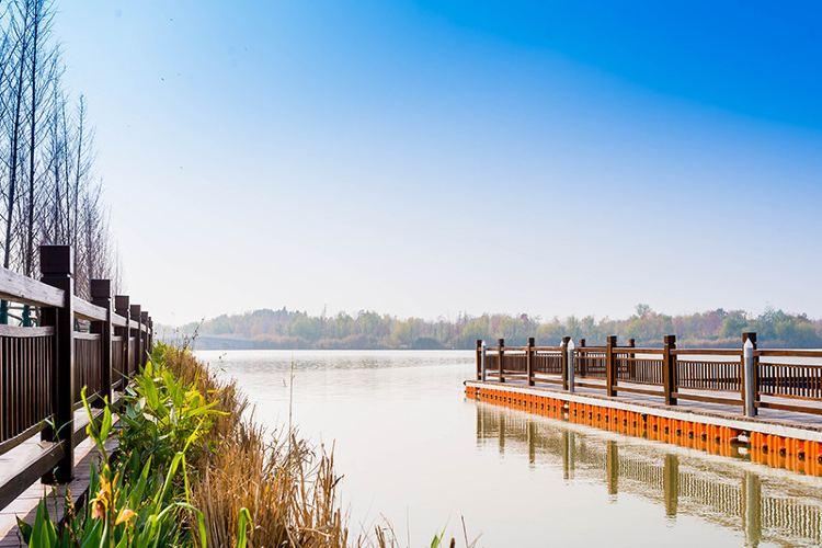 Pan'an Lake Wetland Park3