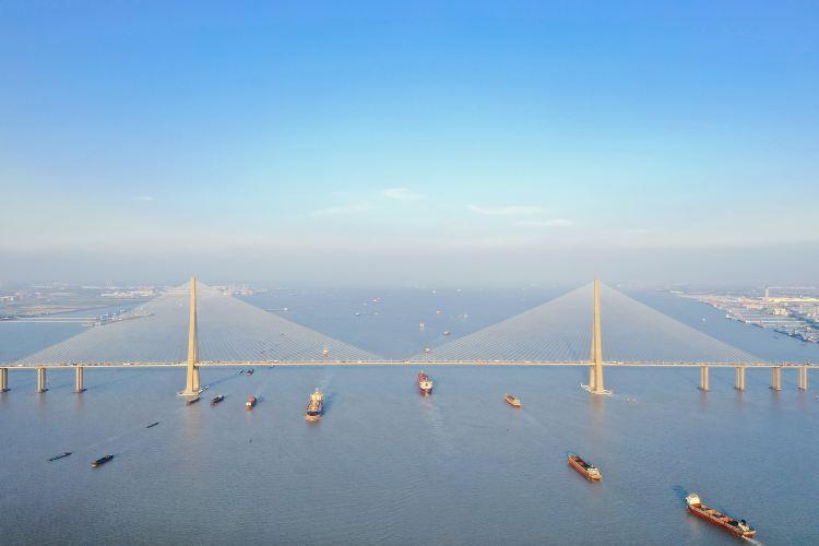 蘇通大橋1