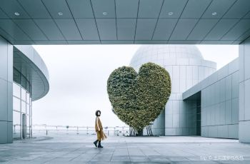 Popular Art Exhibitions