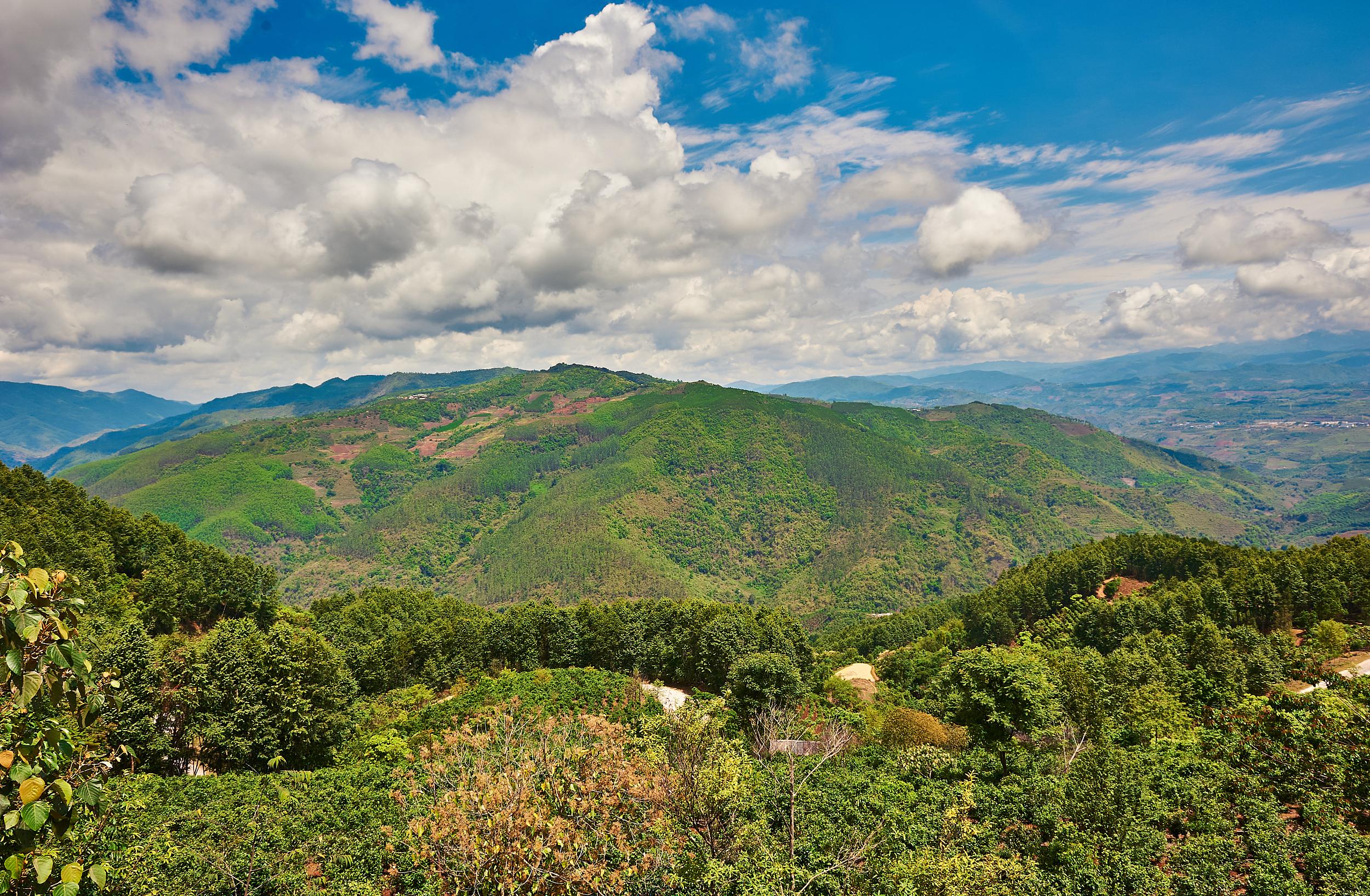 普洱瀾滄縣景邁芒景景區