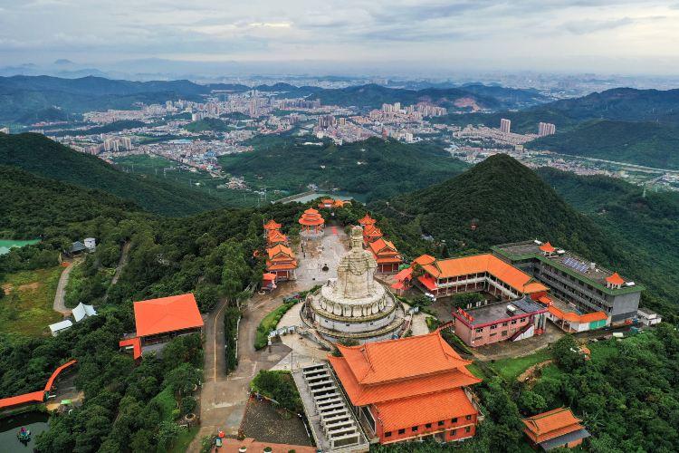 Mount Guanyin Wangshan Temple Scenic Area1