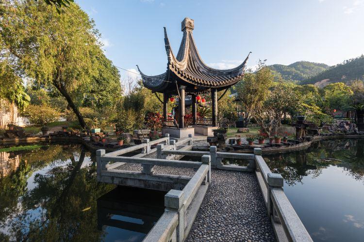 Zhongshan Mansion Garden3