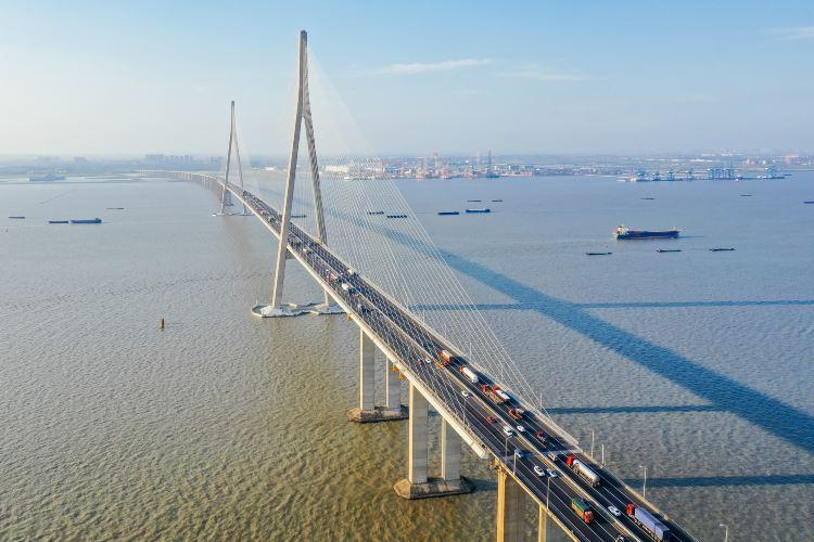 蘇通大橋4