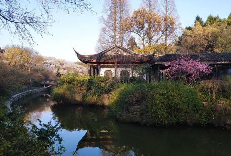 Hongmei Park