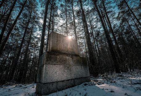 石羊石虎山古墓