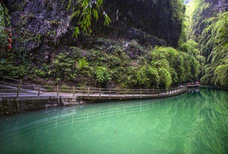 Yaozhi River Scenic Area