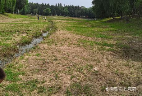 Yuhongnujiang Dong Park