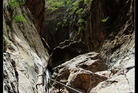 Zhongwei Sikou Scenic Area