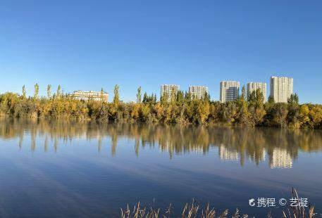 Yellow River Hetao Culture Tourism Wetland Park
